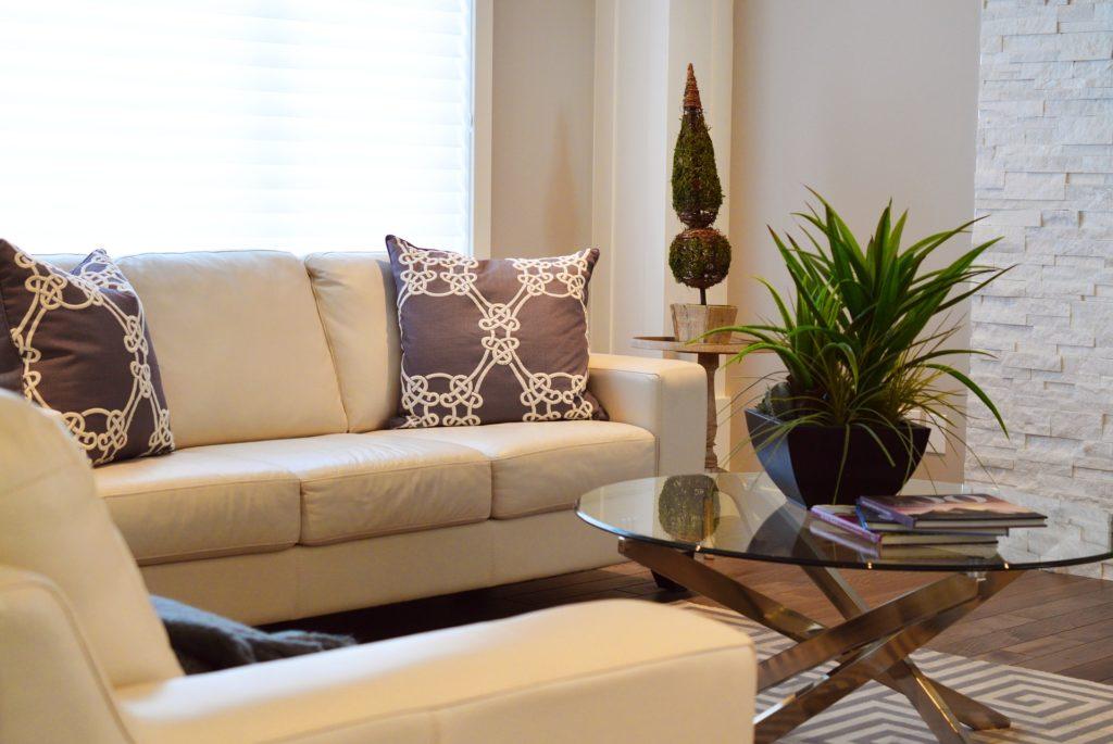 salon avec canapés beiges et coussins imprimés brun, avec plantes vertes
