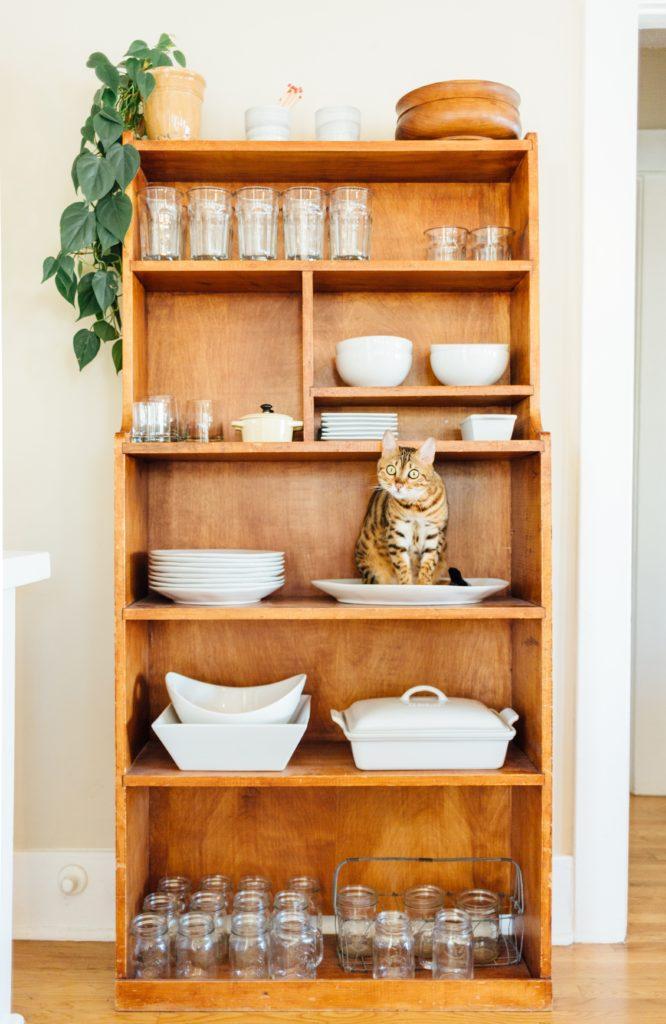 étagère en bois avec vaisselle et chat